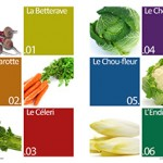 Les-legumes-hiver-mediterraneen2