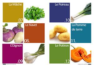 Les-legumes-hiver-mediterraneen3