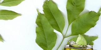 La tisane à la feuille de frêne