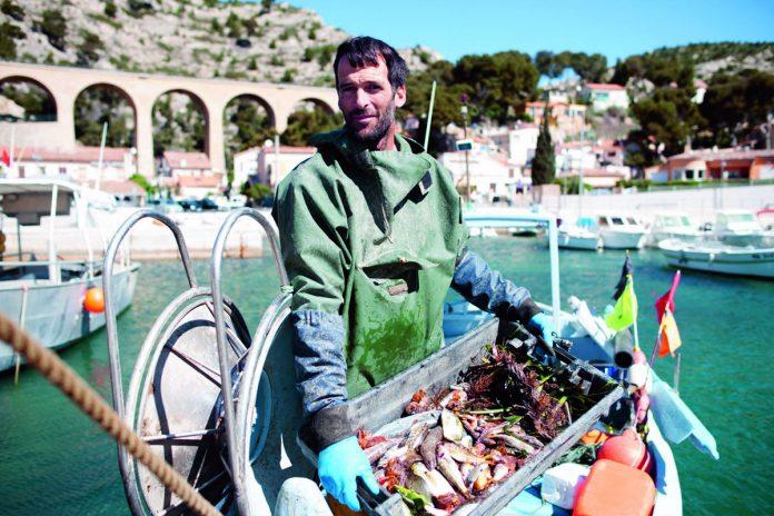 Le régime méditerranéen, les produits de mer et de pêche