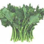 Brocoli-rave