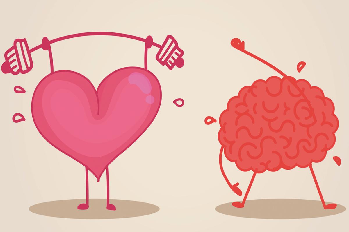 Un cœur sain semble protéger contre le vieillissement du cerveau !