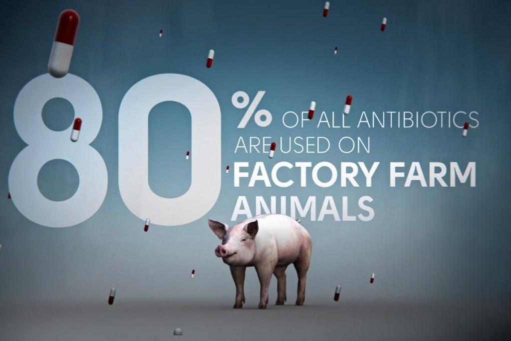 La politique des antibiotiques n'est pas à la hauteur