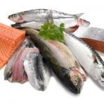 poisson-bon-gras