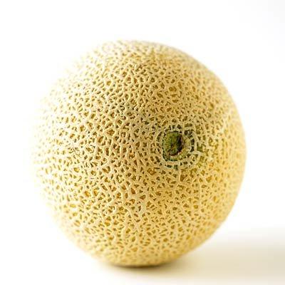 Le cantaloup