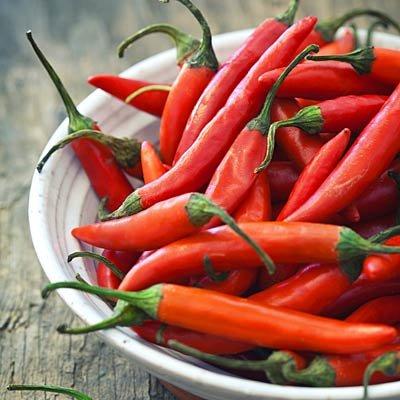 Le piment chili