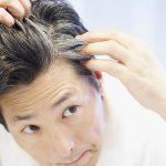 Les cheveux gris prematures sont hereditaires