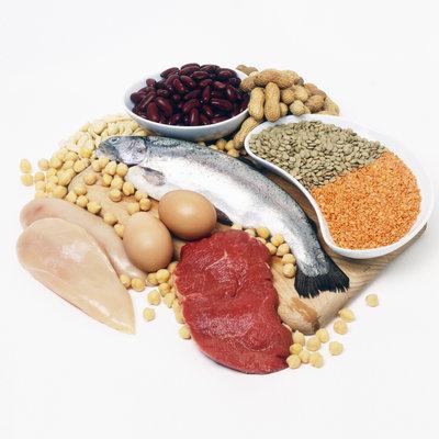 Misez sur la proteine