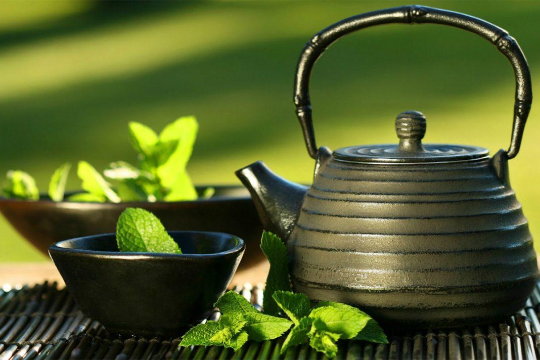 Les bienfaits du thé vert !