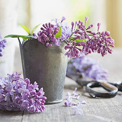 Acheter des fleurs pour vous-meme