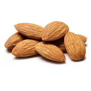 Des noix fruit frais