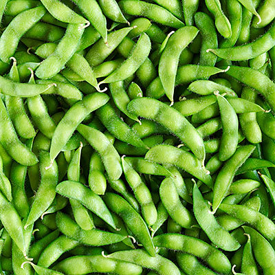 Les graines de soja