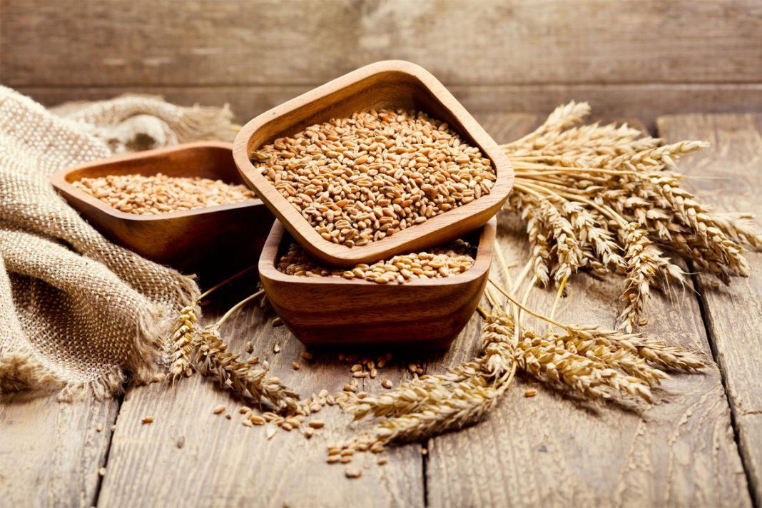 Les vertus des céréales !