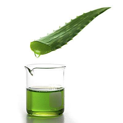 Le jus d Aloe vera