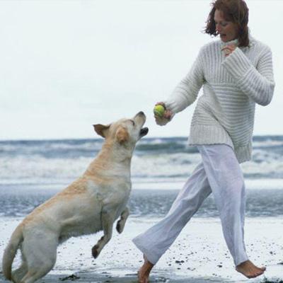 jouer-avec-votre-animal-de-compagnie