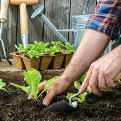 le-jardinage