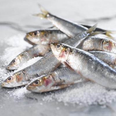 les-sardines