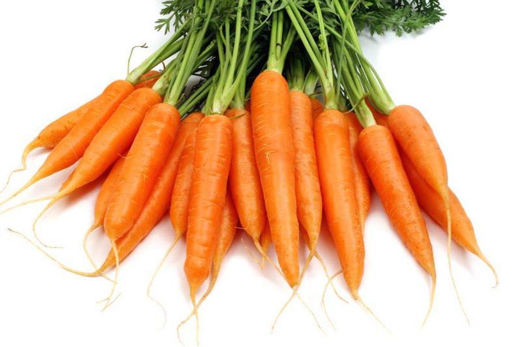 La carotte un légume sous-estimé !