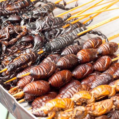 rajouter-des-insectes-a-votre-alimentation
