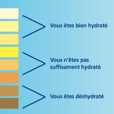 La-couleur-de-l-urine