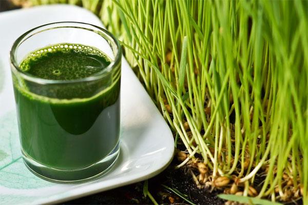 Fares Ceai Detoxifiant Purificarea Organismului 50 g Fares (Suplimente nutritive) - Preturi