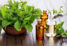 L'huile essentielle de menthe poivrée peut vous aider à arrêter la malbouffe !