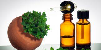 Les bienfaits de l'huile d'origan se révèlent supérieurs à certains antibiotiques délivrés sur ordonnance !