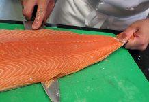 Le saumon d'élevage, un des aliments les plus toxiques dans le monde !