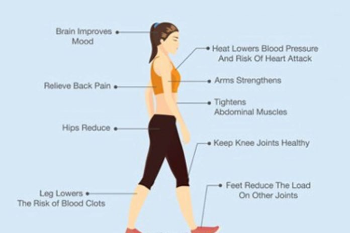 15 minutes de marche par jour peuvent changer votre corps !