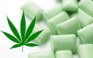 Chewing Gum au cannabis pour soulager la fibromyalgie !