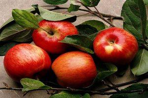 fruits-a-pepins