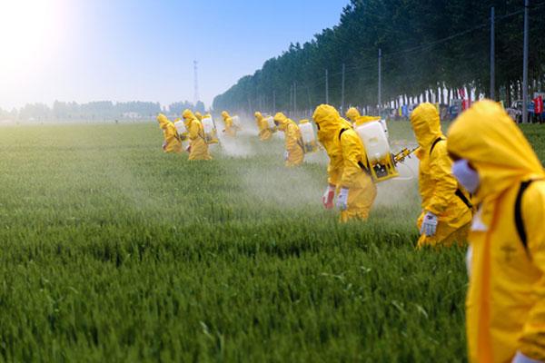 pesticide-1
