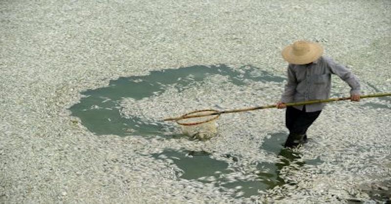 riviere Fu