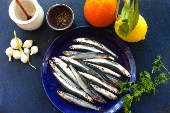 L'anchois,