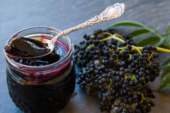 Sureau noir, le fruit le plus anti-viral connu de l'homme !