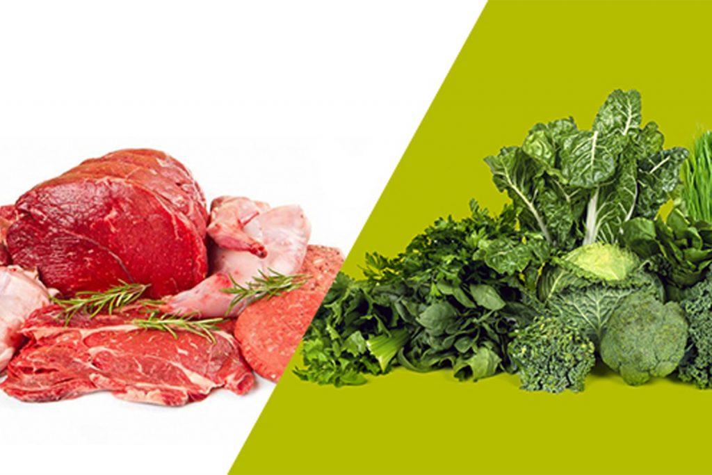10 meilleures sources de protéines : 5 animales et 5 végétales !