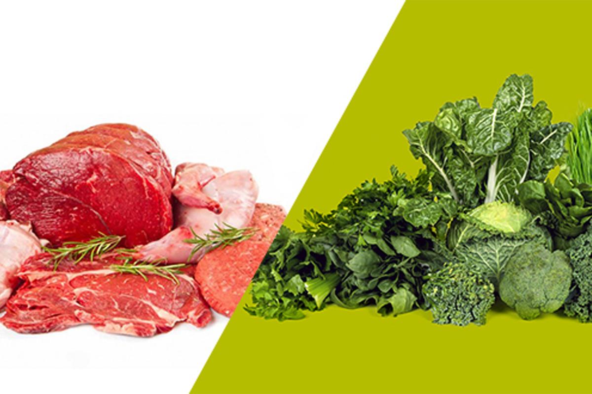 10 meilleures sources de protéines : 5 animales et 5