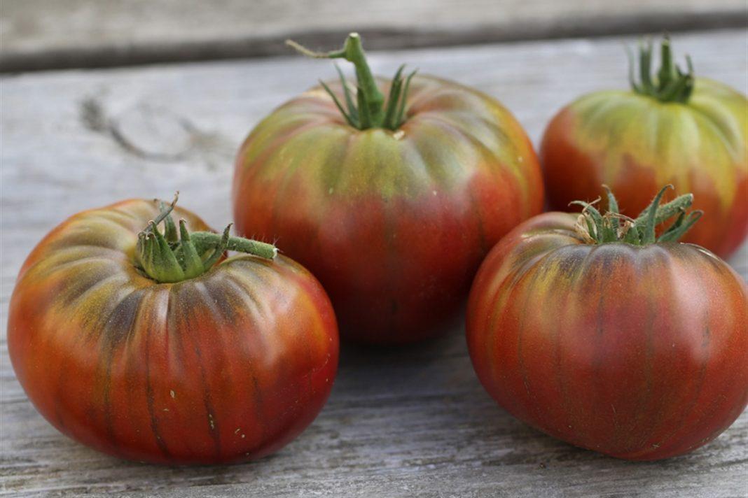 7 bienfaits de la tomate sur la santé !