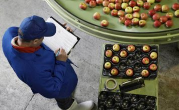 Dirty Dozen 2018 : Les 12 fruits et légumes les plus contaminés en pesticides !