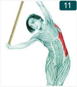 Flexion latérale debout à la barre