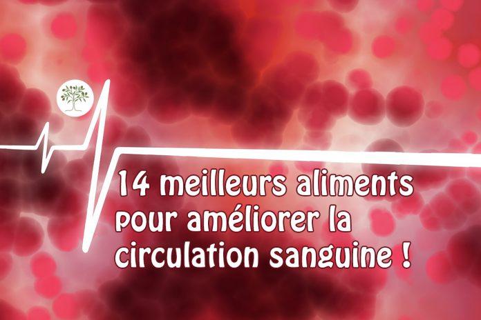 14 aliments pour améliorer la circulation sanguine !
