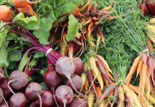 Les 12 légumes racines les plus nutritifs !