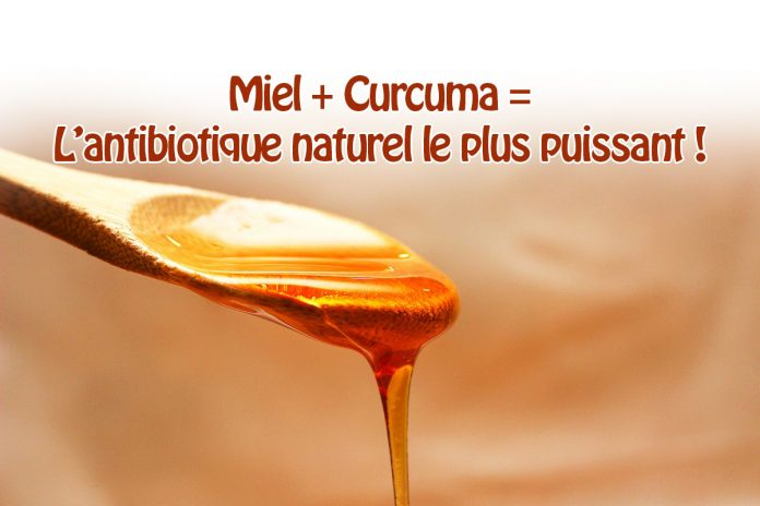 Ce mélange de miel et de curcuma est l'un des plus puissants antibiotiques naturels !