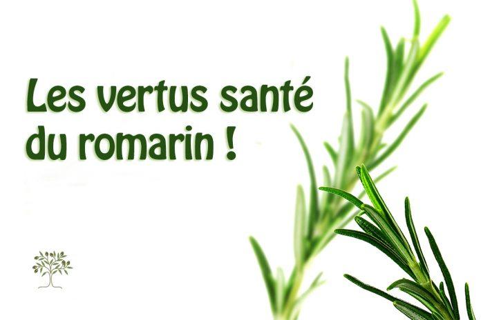 Les vertus santé du romarin !
