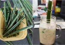 Un café aux Philippines utilise maintenant des pailles faites de feuilles de cocotier pour éliminer les déchets plastiques !