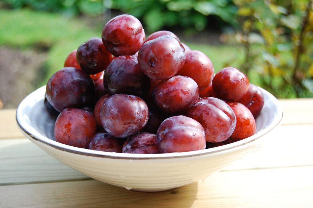 7 Bienfaits santé des prunes et pruneaux !