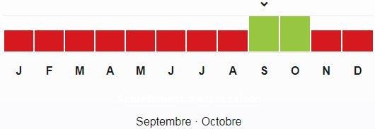 Jujube-saison