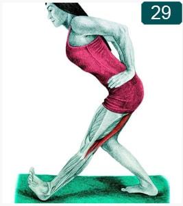 Flexion vers l'avant d'une seule jambe